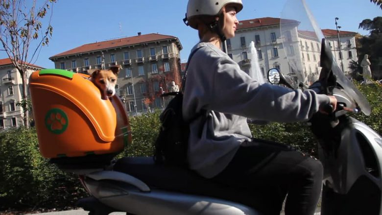 pet-on-wheels-carrier-motorcycle-bicycle-4-1